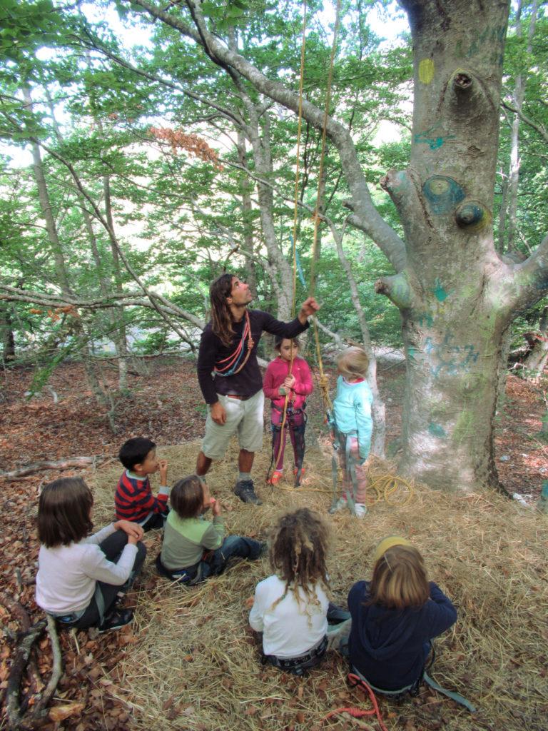 Ecole d'Eourres - Grimpe d'arbres