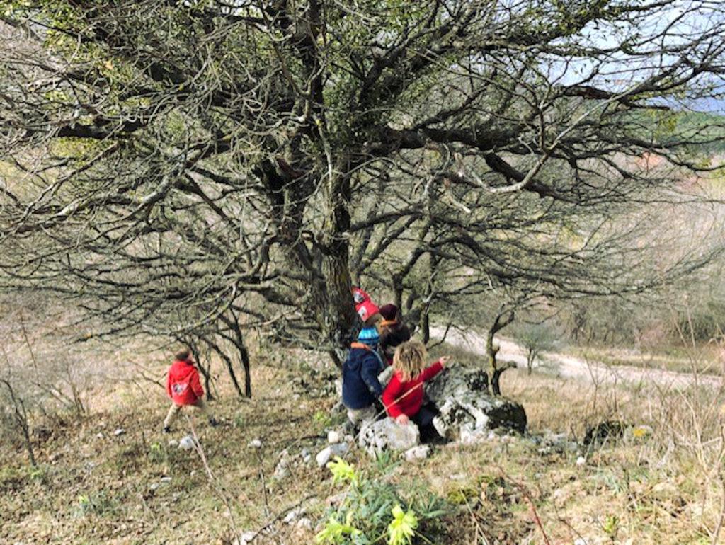 Micro-crèche - Exploration de la nature